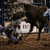 Sometimes the bull wins, especially when the cowboy gets his boot caught in the rope and is flung around, rag doll style.