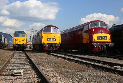 Never mind the umpteen class 50s, these two red locos were the stars of the show! 2/9/17