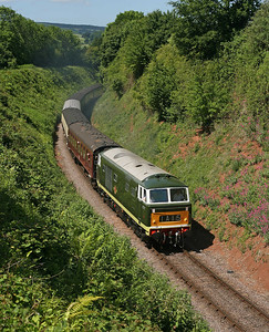 The power handle is clearly turned wide as D7017 brings its train through the cutting towards Washford on a service from Minehead. 12/6/10