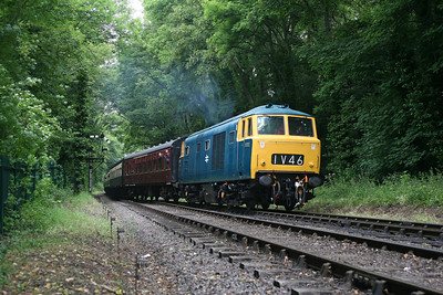Showing the final BR livery for Hymeks, D7017 rolls into Bishops Lydeard station, West Somerset Railway