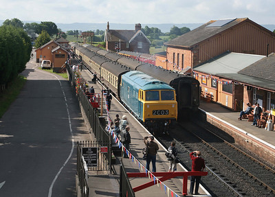I don't expect that Bishops Lydeard station was ever this busy under BR: D7017 waits for departure time. 13/6/09