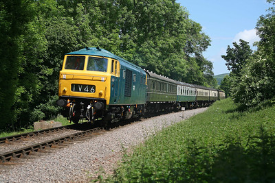 It's warm weather to be walking the track with a heavy camera case but very rewarding when you can witness this kind of scene - D7017 with an odd rake of coaches threads through the trees near Nethercott. 13/6/09