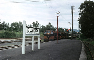 143 and a sister at Killarney, 24 August 1980 (when they had to reverse out to continue for Tralee)