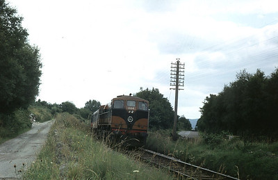 084 heading for Killarney, 24 August 1980