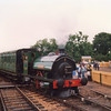 Saddle tank Invincible shunting at Haven Street on 26/08/88.