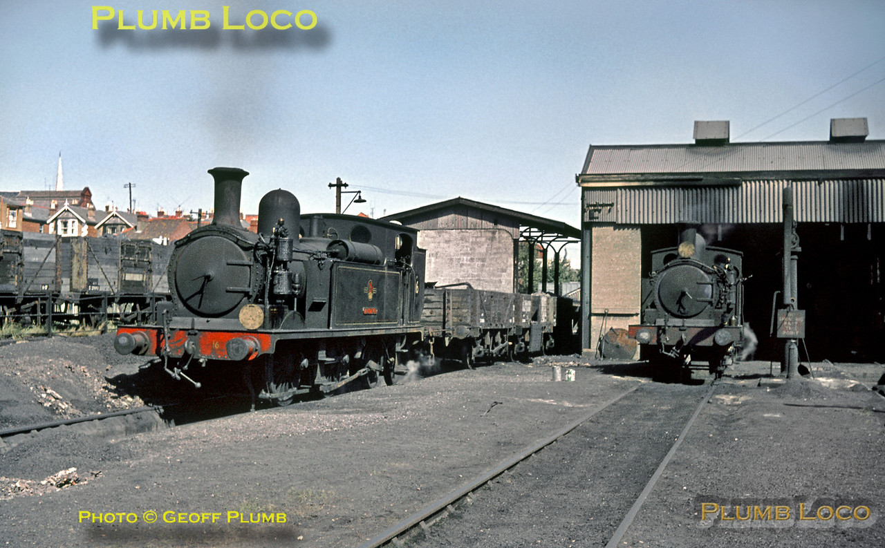 "W16 ""Ventnor & W21 ""Sandown"", Ryde Shed, 30th August 1964"