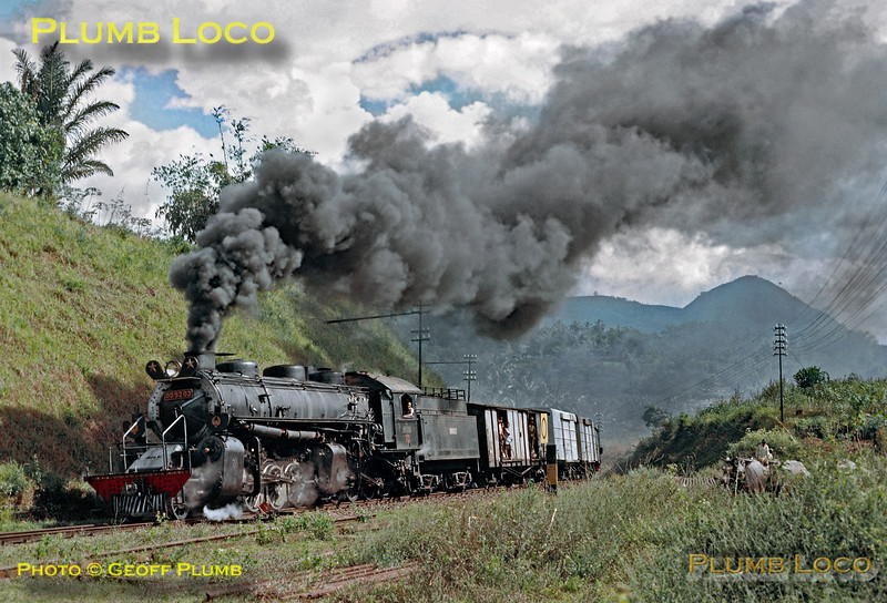 PNKA DD52 class 2-8-8-0 Mallet No. DD52 03 is en route from Tjibatu toTasikmalaja with a short freight train - though there are plenty of passengers on board. Despite the apparent hard work, the train is just entering the station area at Malangbong, to be met by a crowd of people. Note the water buffalo grazing alongside the railway! Thursday 19th July 1973. DD52 03 was built by Hanomag in 1923, works No. 10223. Slide No. 11296.