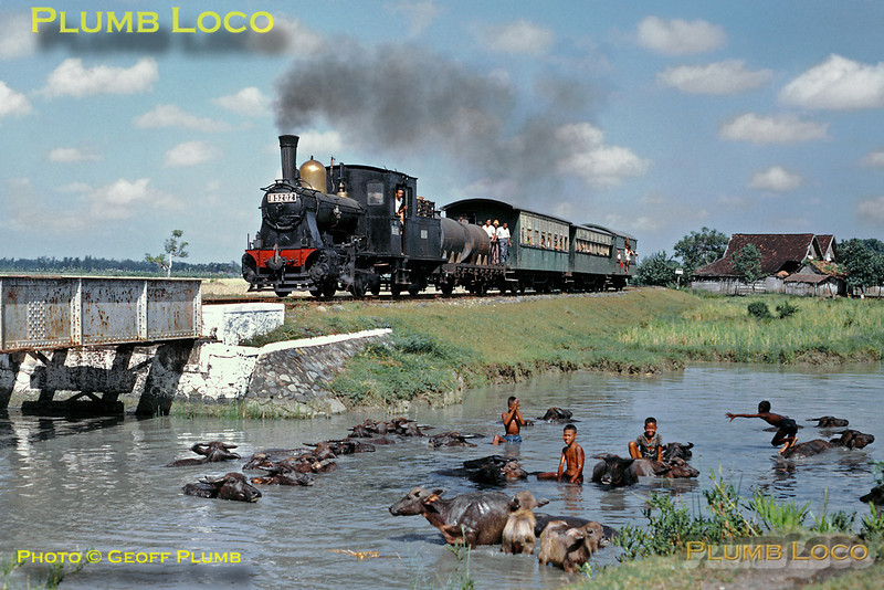 PNKA (Indonesian State Railways) B52 Class 0-4-0 No. B52 02 with the 07:18 train from Kudus to Rembang, somewhere between Djuana and Rembang on the northern coast of Central Java. Some of the local kids play with the water buffaloes to keep cool! Monday, 23rd July 1973. This engine was one of a batch built by Hartmann in 1908. Slide No. 11667.