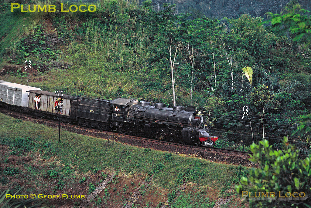 2-8-8-0 Mallet No. DD52 03 is working train 348, the 12:15 from Tjibatu to Tasikmalaja, but running around an hour late, here seen somewhere between Tjipeundeuj and Tjiawi. Presumably, this stretch is downhill as the loco is not working hard or leaking steam... Thursday 19th July 1973. Slide No. 11320.