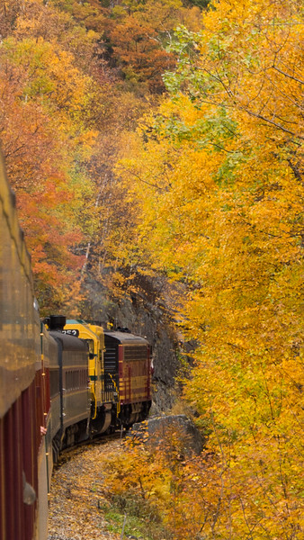 """There are few train rides that offer better """"leaf-peeking"""" in Fall than the Notch Train of the Conway Scenic Railroad in New Hampshire. The train this day is being operated for the benefit of the Railroad Enthusiasts organization from Massachusetts, and has a vintage Boston and Maine F7 on the point leading a GP38 painted in the CSR's Maine Central-inspired colors. The train is en-route from home base in North Conway, NH through the Franconia Notch to the current end of track at Fabyans.<br /> <br /> October 2015"""