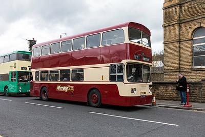 1972 Leyland Blueline