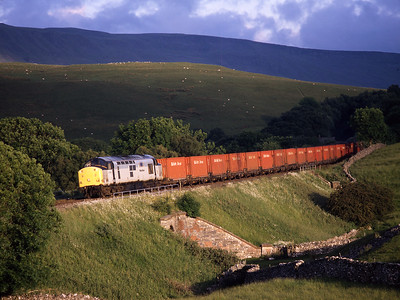 The sun popped out at the last minute to illuminate 37705 at Birkett Common with the Saturday evening coal train, 27/6/98.