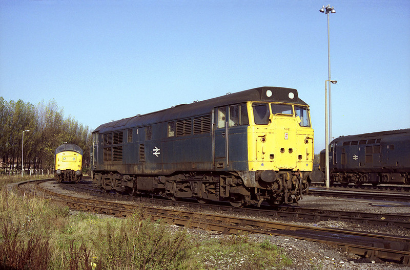 31235 Stands on Botanic Gardens, Hull, on the afternoon of November 10th 1984. Despite regular visits to this location during this period, I have very few photographs here taken in sunlight - this being one of the better efforts.