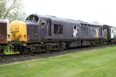 Scotsman Liveried 37428  05/05/12.