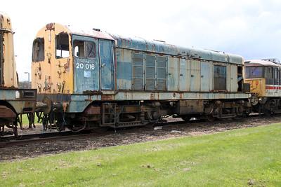 BR Blue Class 20 20016 05/05/12.