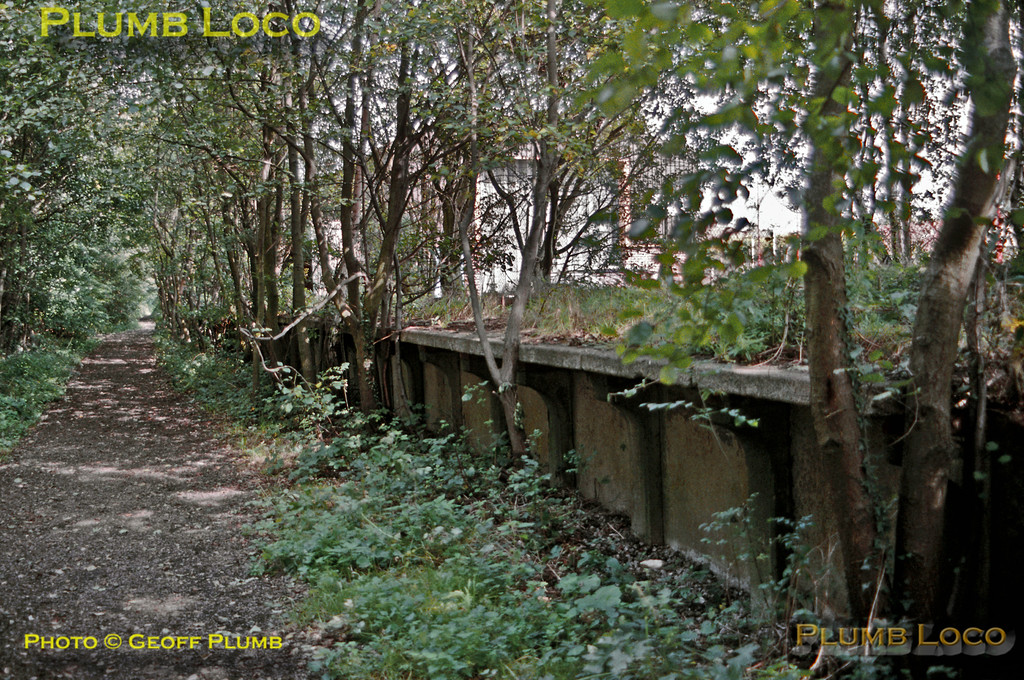 Liss station, Longmoor Military Railway. Remarkably, the station platform was still in place alongside the car park of the BR station. The trackbed looking towards Liss Forest is now a footpath and other odd remains of the railway could be found amongst the undergrowth. The trees alongside the platform have grown during the 26 years since closure, and quite what the site is like now, another 20 years on, I don't know! Saturday 5th September 1992. Slide No. 22890.
