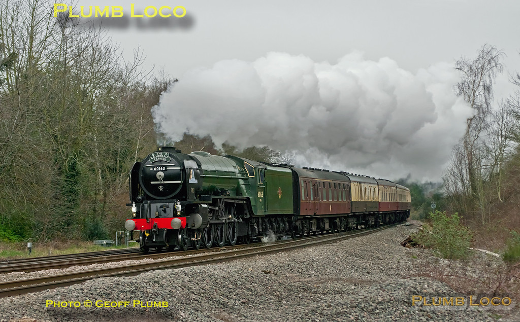 "A1 class 4-6-2 No. 60163 ""Tornado"" takes the Berks & Hants line at Southcote Junction, working 1Z29 ""The Cathedrals Express"", 08:06 from Paddington to Plymouth and return. Running almost on time it passes at 09:08 on yet another dull morning, Saturday 10th March 2012. Digital Image No. GMPI11235."
