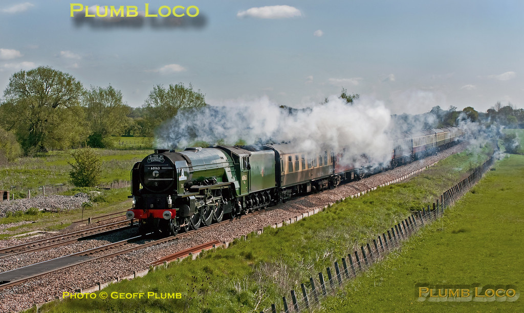 "A1 4-6-2 No. 60163 ""Tornado"" is working ""The Cathedrals Express"", 1Z31, 08:06 from Paddington to Shrewsbury and return, here approaching Shrivenham on the outward journey, running on time at 10:04 in a strong northerly breeze. Saturday 12th May 2012. Digital Image No. GMPI11677."