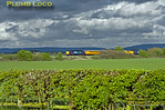 37610 & 37606, Kingsey, 1Z19, 3rd May 2015