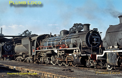 SAR No. 3644, Springs, 20th August 1972