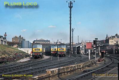 """General View, King's Cross """"Bottom Shed"""", 4th March 1966"""