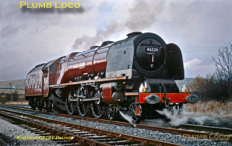 "46229 ""Duchess of Hamilton"", Hellifield, 27th February 1982"