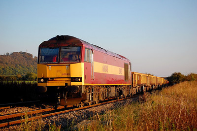 60048 6v41 eastleigh to westbury engineers passing upton scudamore 11 oct.original shot was too shadowy but noticed this gap where sun was.bit of a trek