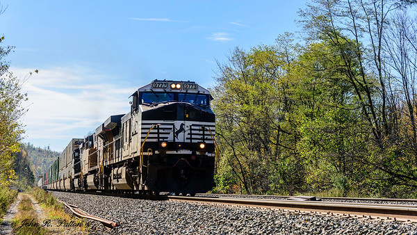 Norfolk Southern NS 9773