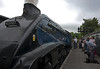 Sir Nigel Gresley - Pickering