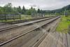 Levisham Tracks