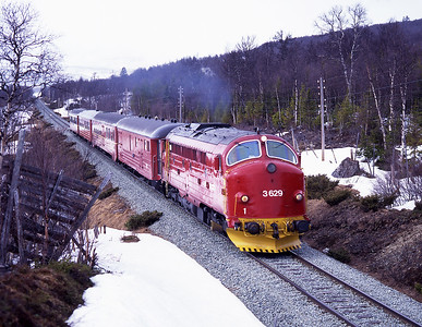 We struggled to find locations on the Røros line; with train 302 imminent we had to settle for this location at Harborg north of Røros, 27/5/97.