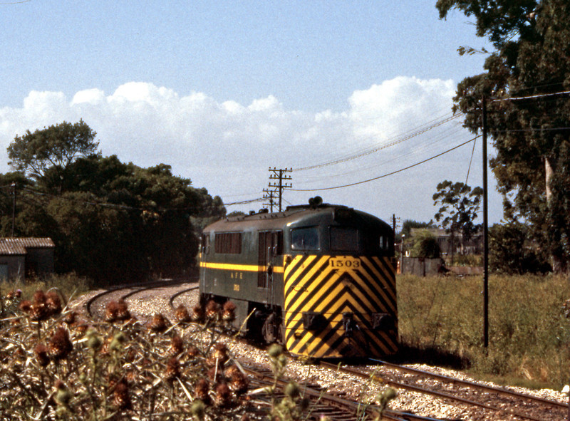 A light 1500 class approaches the junction north of Sayago off the line from Penarol