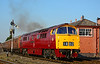 """D1015 """"Western Champion"""" departs Kidderminster in fine style, this the 16:11 departure. The low sun helps to show off the classic lines of the Western locomotive 02/10/2015."""