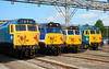 Four of the best.  From left to right we have 50044, 50026, 50017, 50007.