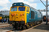 "50007 ""Hercules"" in BR blue, stunning !!."
