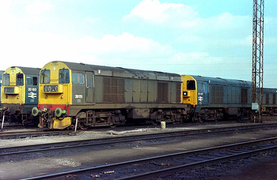 Class 20 No 20152/20142 at Toton Depot on 16 April 1979
