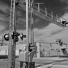 FEC crossing at 36 St. Miami