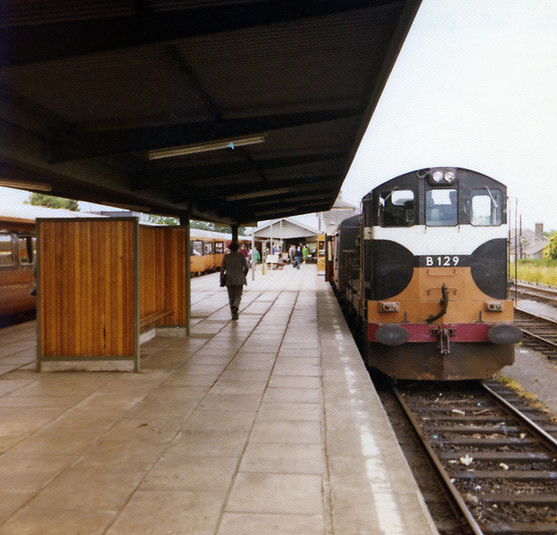 Limerick Junction; B129 is one of the original single cabbed B class which convinced CIE of the superiority of EMD power over the Metro Vick/Crossley diesels they had struggled with for five years. The 08:30 to Cork is on the left, B129 is on the connecting service to Limerick