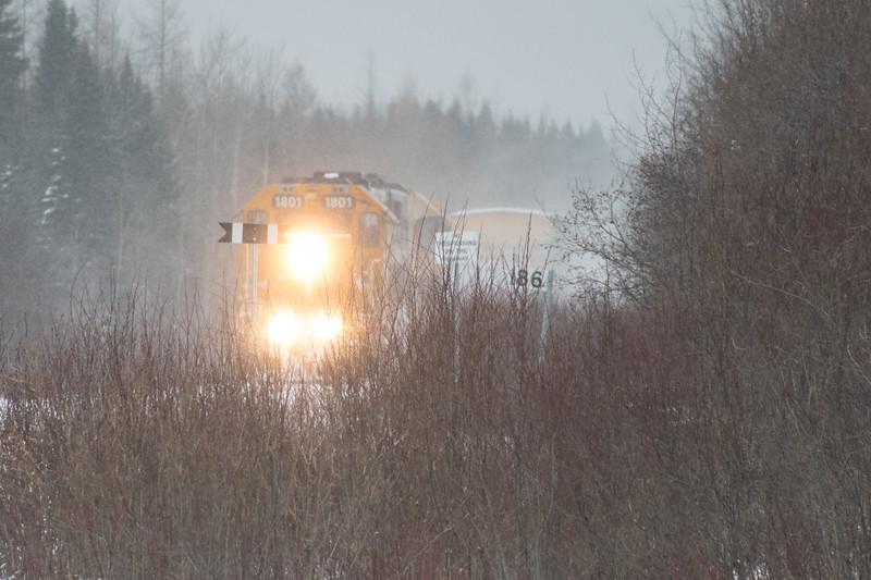 Polar Bear Express mixed train approaching Moosonee in moderate snow.
