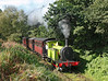 NER No1310 is	seen passing through Tanfield woods with the 10.30hrs departure from East Tanfield		<br /> 09/09/2012