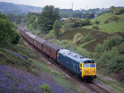"50015 ""Valiant"" passes a carpet of bluebells in Burrs cutting on the East Lancs Railway 6/6/96."