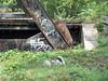 Old bridge on former D&H mainline, North Scranton PA Sept 20, 2002