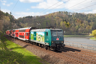 146 010 approaches Königstein with an S Bahn service to Schöna. The locomotive carries an advertising livery for Schloss Wackerbath a wine growing estate with a restaurant near Dresden. Wednesday 20th April 2016.