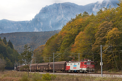 With the Bucegi Mountains 474-026 climbs upgrade north of Azuga with northbound cargo vans. Thursday 26th September 2013.
