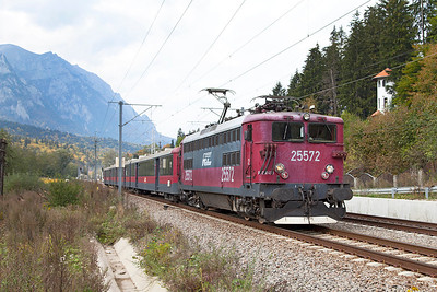 25572 approaches the Sinaia stop with R14060 14.00 Brasov to Buchuresti Nord. Thursday 26th September 2013.