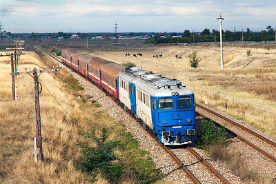62-1142 and a classmate lead the R7051 08.30 Ploiesti Sud to Urziceni on the approach to Urziceni. Tuesday 24th September 2013.