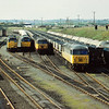 56085 is the only identifiable loco in this line up at Healey Mills