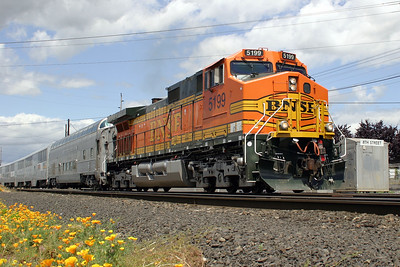 BNSF Employee Appreciation Special - BNSF 5199