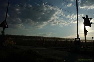 Vufflens RXCrossing Sunset_72