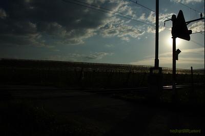 Vufflens RXCrossing Sunset_74